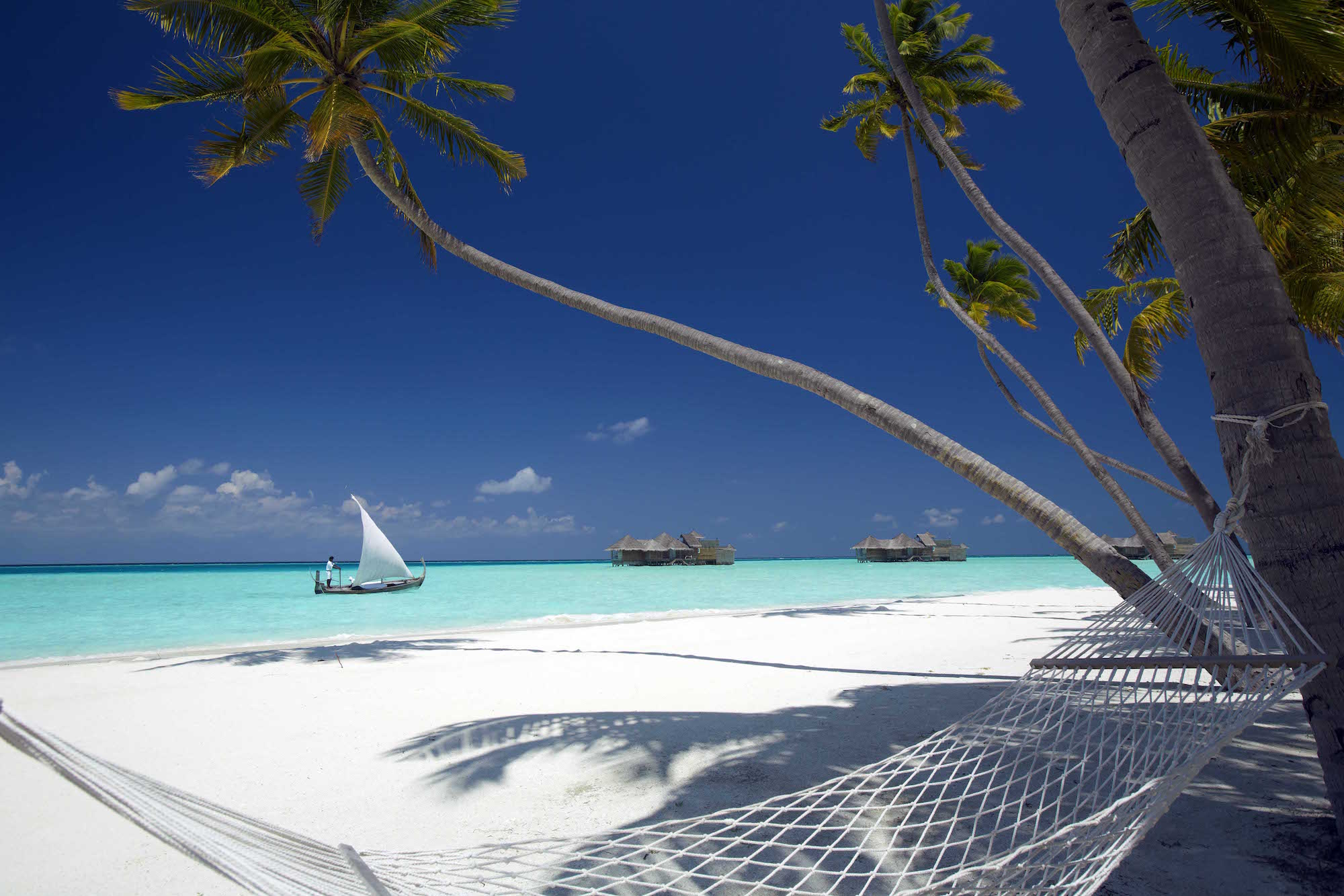 Gili Lankanfushi Resort Maldives - Hammock on the beach