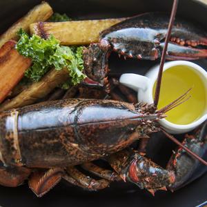 Fogo Island Inn gastronomic restaurant food