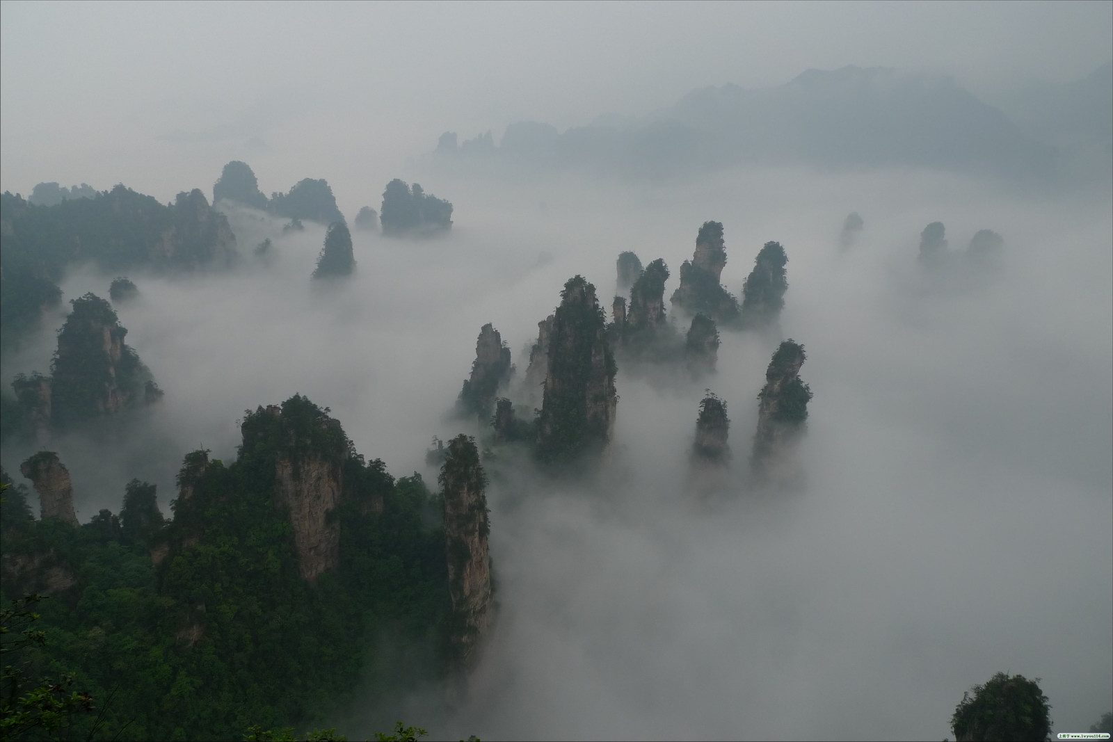 Mist, Zhangjiajie National Forest Park, China